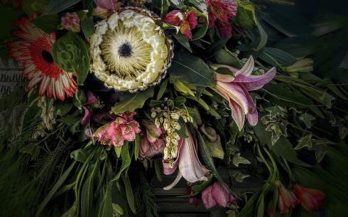 botanical-beauty-final