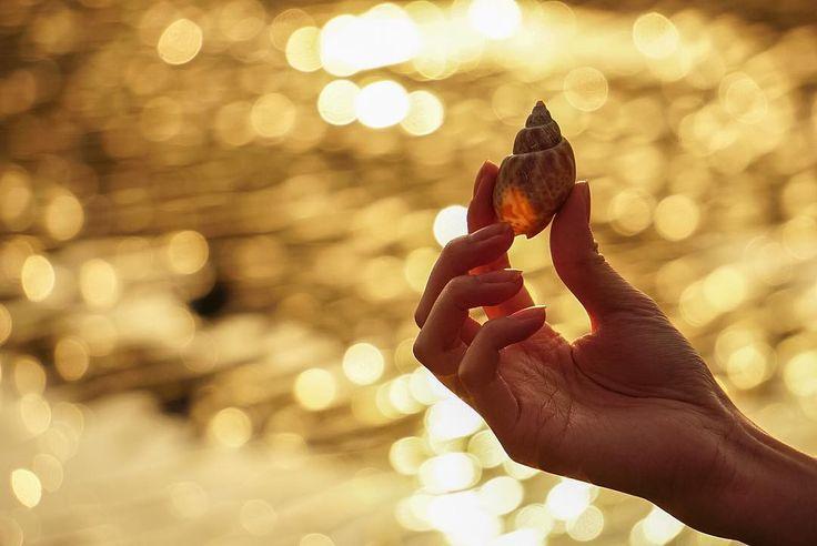 よっしー (@yossyjkr) Instagram media 2017-02-27 16:28:11 耳をすませば × 流れる潮騒の音 音が聞こえてくるのは なんか別の貝殻だっけ..(´๑•_•๑) : 立ち寄った冬の海は極寒でした← #大阪 #兵庫 #ポートレート #ファインダー越しの私の世界 #写真好きな人と繋がりたい #写真を撮ってる人と繋がりたい #カメラ仲間募集 #カメラ友達募集 #カメラ女子 #ポートレート女子 #玉ボケ #玉ボケ写真部 #sony #α6000 #海 #夕焼け #icu_japan #team_japan_西 #wu_japan #jp_gallary #ig_japan #bestjapanpics #bjp_pj_collab #japan_daytime_view #discoverphotolife_ig #IGersJP #tokyocameraclub