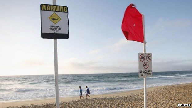Two men walk past a shark warning sign on a beach in Newcastle (January 2015)