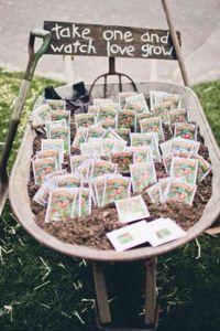 «Semences-cadeau» à choisir entre : myosotis tournesol, lavande, pois de senteur, gypsophile, mix fleurs sauvages