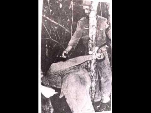 Crímenes de Ernesto Che Guevara