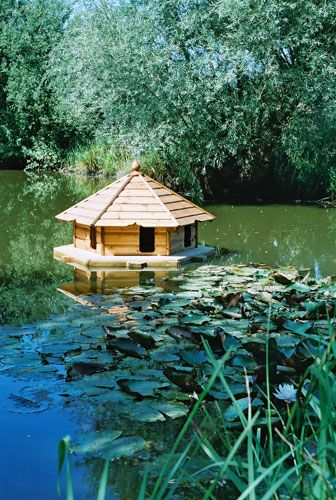 In pictures: Must-have duck houses for every budget | Environment | The Guardian