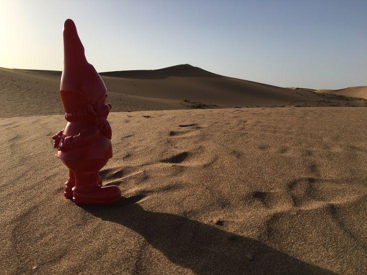 Unser Gartenzwerg in der Wüste Erg Chegaga | Marokko #wüste #desert #ergchegaga #marokko #morocco #gartenzwerg