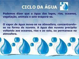 Resultado de imagem para a importancia da agua