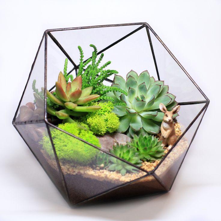 Флорариум – это неповторимая композиция из живых растений, которая потребует минимального ухода. Флорариум – эксклюзивный подарок близким, любимым, друзьям, коллегам и партнерам. Эта яркая летняя композиция из суккулентов в вазе ручной работы долго будет радовать Вас и Ваших близких. Флорариум добавит гармонии в ваше персональное пространство, подчеркнет ваше настроение и индивидуальность. Растения: эхеверия, молодило, седум Диаметр: 20 см