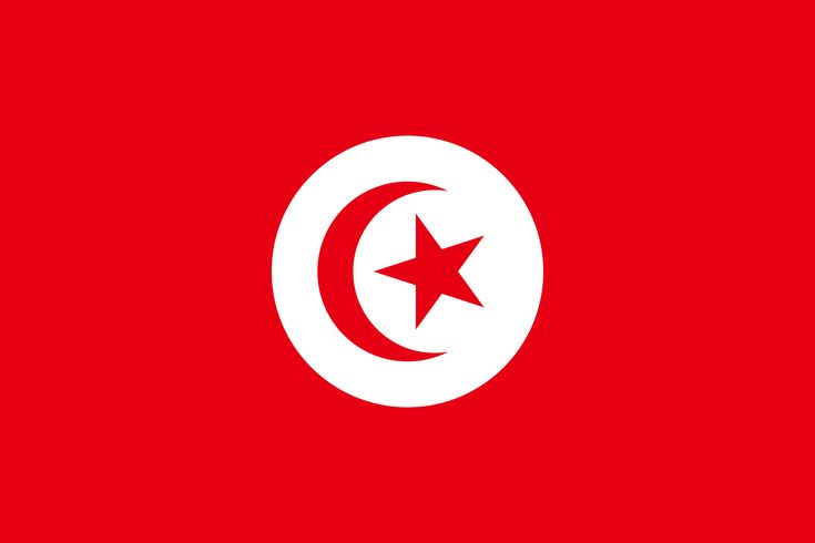 2000px-Pre-1999_Flag_of_Tunisia.svg.png (2000×1333)