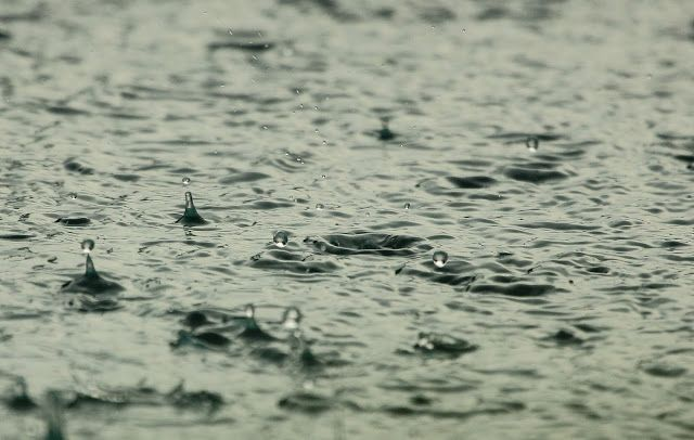 Les beaux jours apparaissent doucement (OMG, on y croyait presque plus!), mais le printemps comporte toujours son lot de jour de pluie,...