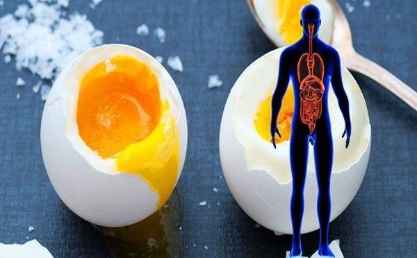 Nagyon kevesen tudják, hogy milyen csodálatos dolgot tapasztalhatnak, ha minden nap megesznek 2 darab főtt tojást. A...