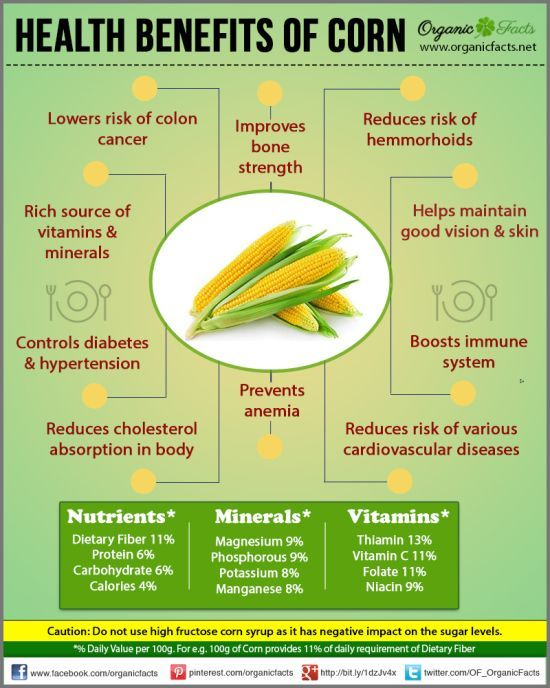 Organic Facts - Vegetables - CORN