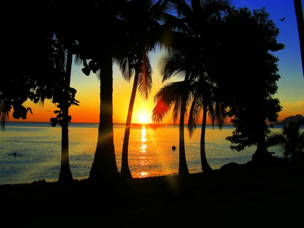 Sunset on Exotic Beach in Martinique    http://society6.com/BluedarkatLem/Sunset-on-Exotic-Beach-in-Martinique_Print/