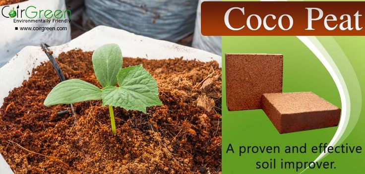 13 best images about coir peat on pinterest coconut the for Garden soil definition
