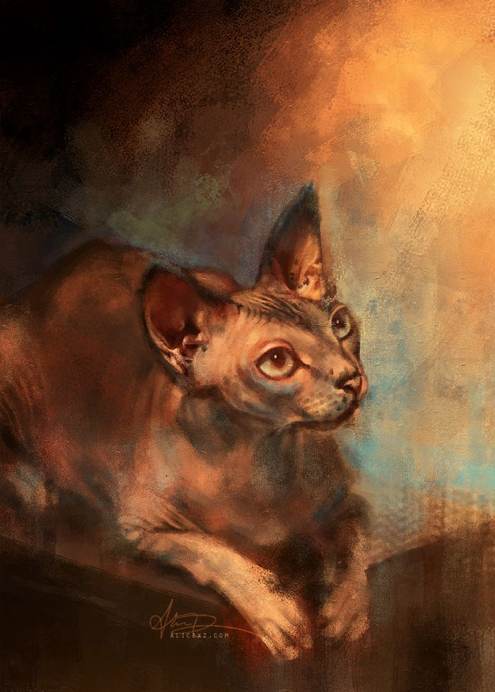 Handsome Sphynx by `alicexz on deviantART :3 Pretty kitty!