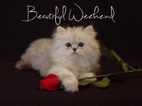 Beautiful Weekend friend weekend friday sunday saturday greeting weekend…