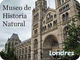 Resultado de imagen para www museo de londres con fosil de ballena l