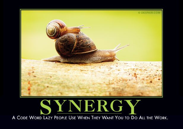Synergy in nature  My buddy! The snail that went from the front yard to the back... slowly.
