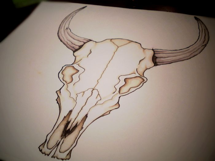 Bull Skull Drawings | 18. Zodiac: Bull Skull Design by WingsDurus on deviantART