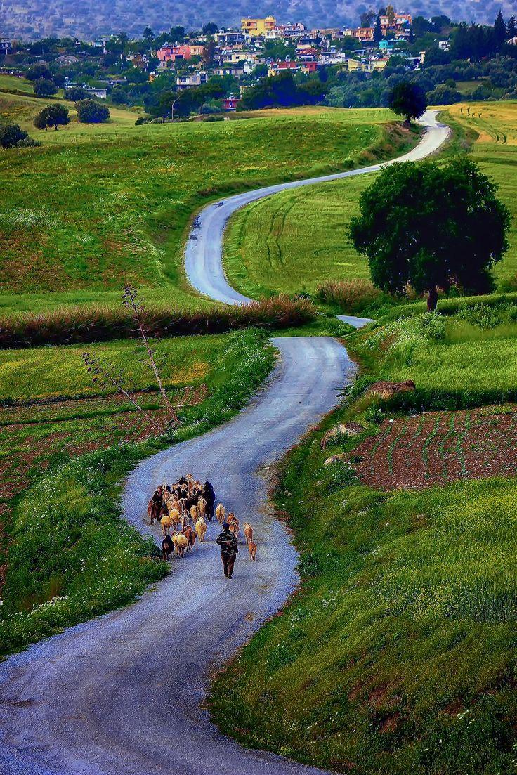 back to the village by Mutlu  Kader on 500px ...... Kayadibi Village,Tarsus,Turkey