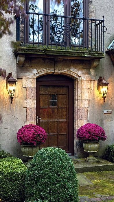 I need a new front door.       It must be charming and welcoming… very important criteria considering this is the first impression of my...