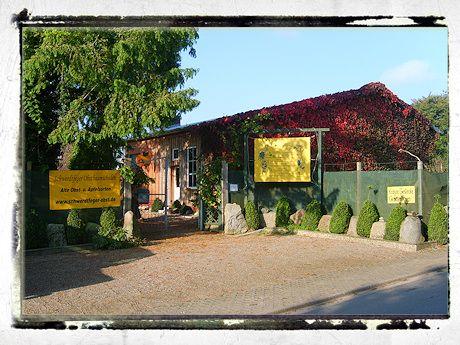 Ihr Obstbaum-Shop! Alte Obstsorten - Alte Apfelsorten - www.alte-obstsorten-online.de