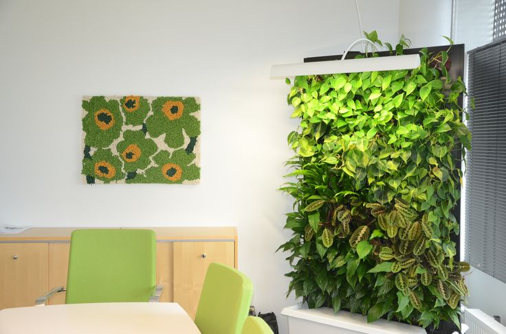 Naava smart green wall in a lounge.