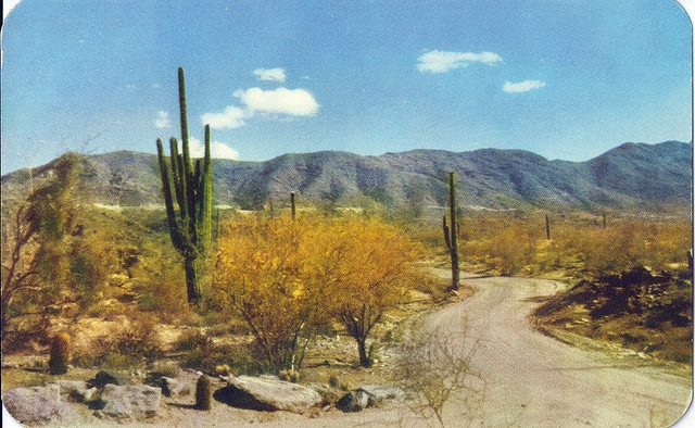 South Mountains: Photos, Desserts, Flickr, Beautiful North, Mountain Parks Preserves, Art Photography, Arizona, My Dads, South Mountain