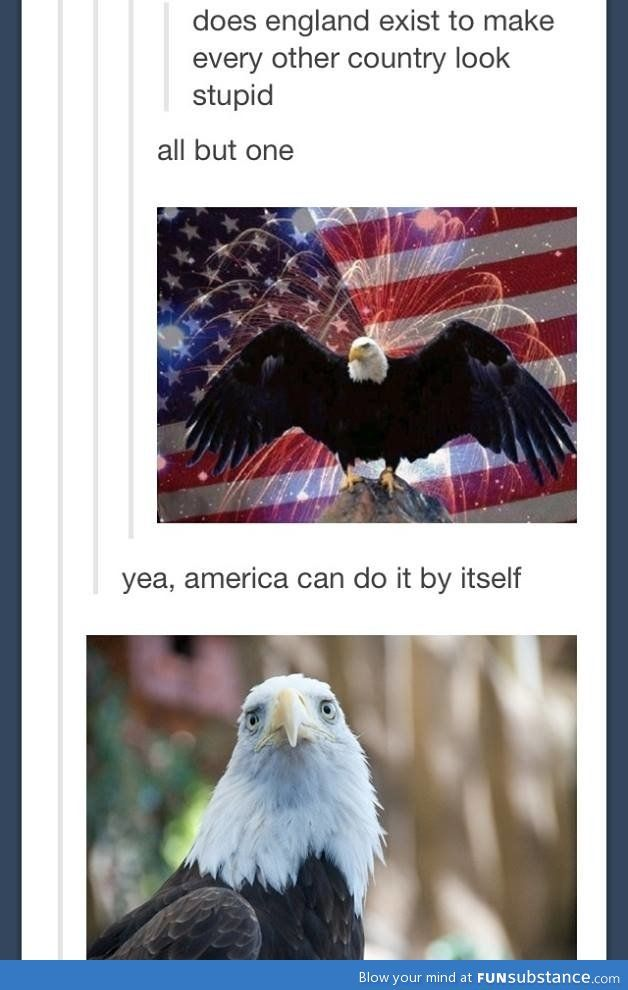 The 2nd eagle looks so sad, and yet so undefeated by that British comment :) KESESESESE~ THE BRITISH RULE!