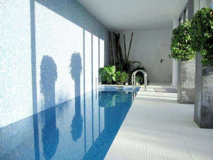 10 best design elements swim lane images on pinterest for Pool design elements