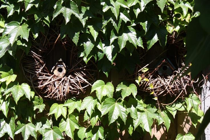 Kranzen in de tuin met in het midden kleine vogelhuisjes.....