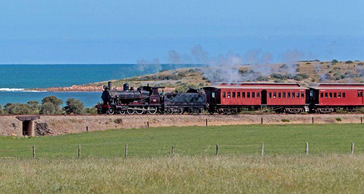 Cockle train
