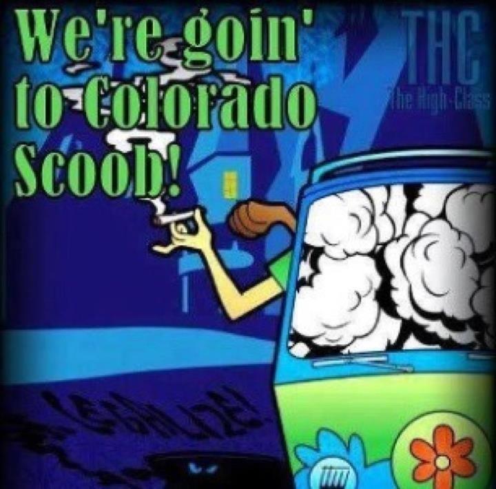 Lyric ganja farmer lyrics : 12 best Marijuana images on Pinterest | Cannabis, Comic and Grass