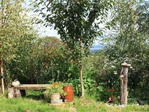 Green Living - Gardening - A beginner's guide to permaculture gardening - The Ecologist