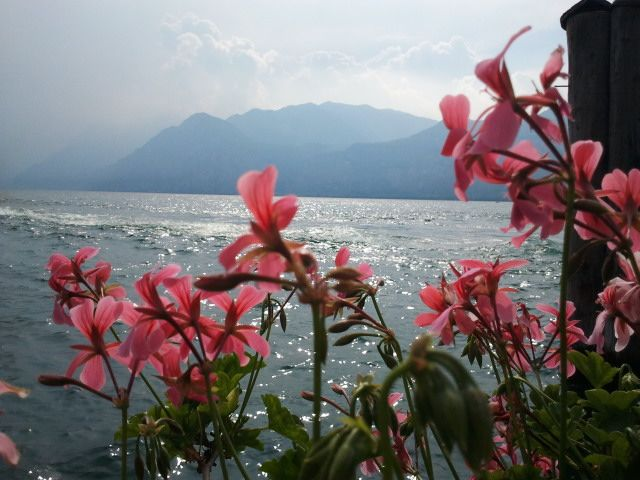 Garda Lake, Italia my love ...