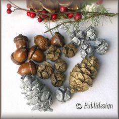 Glands naturel vernis pommes de pins argenté doré pour vos créations noël