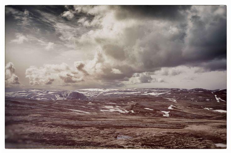 Nordkapp landscape. Photo by Lise Ulrich.