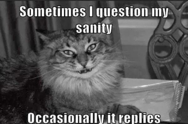 Sometimes I question my sanity, occasionally it replies...lol..:)))