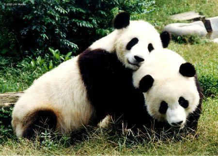 Your hug is warm... I like it..