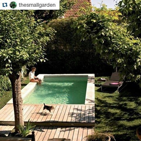 Couldn't have said it better @thesmallgarden #Repost @thesmallgarden with…