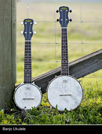 KALA Brand Music Company - Where Innovation meets Tradition, Passion meets Playability, & Quality meets Value. Check out our beautiful ukulele and U-Basses and more.