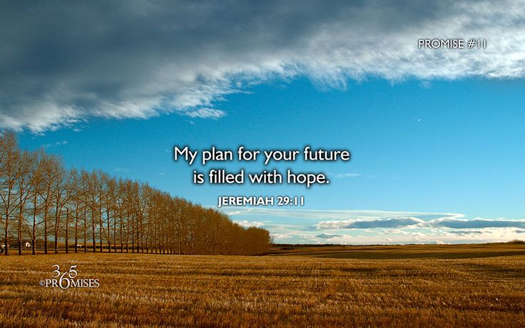 Promise #11 My plan for your future is filled with hope. Click on the link for the devotional :)