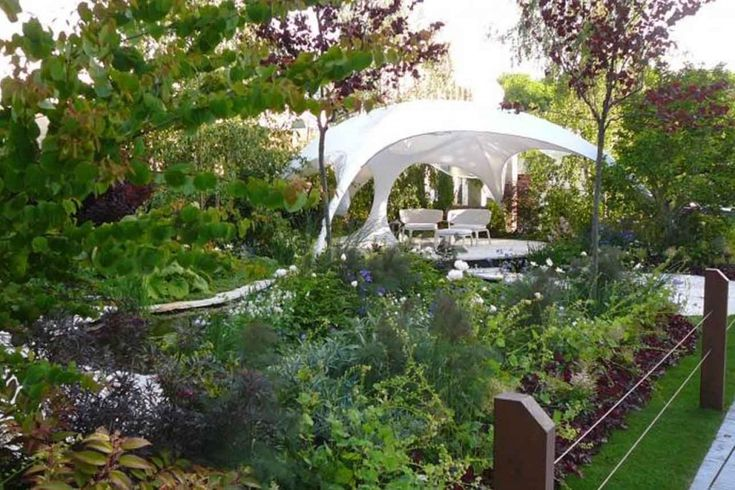 26 best perth wa native garden ideas images on pinterest for Garden design ideas perth wa