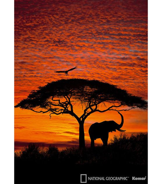 Best 25 african sunset ideas on pinterest new africa for African mural painting