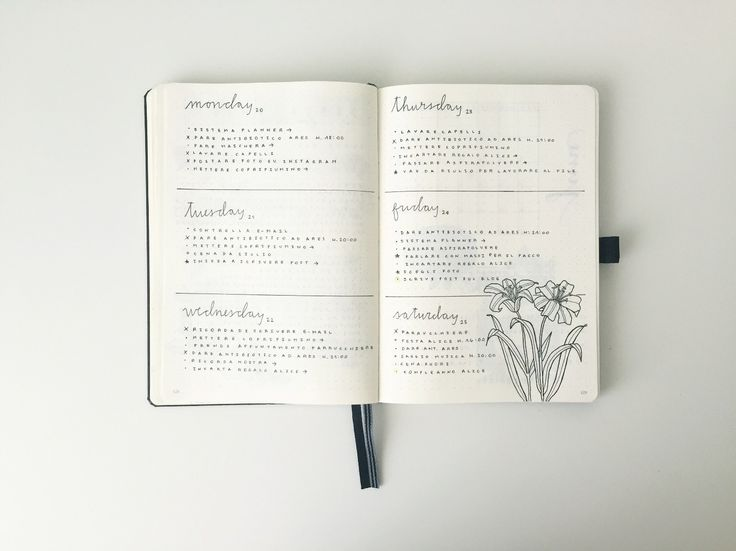 Bullet Journal® Show & Tell with Federica @feebujo. Daily Log.