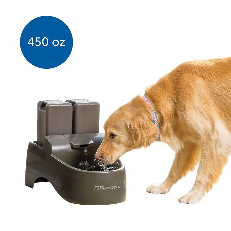 PetSafe Drinkwell Indoor/Outdoor Dog Fountain, Pet
