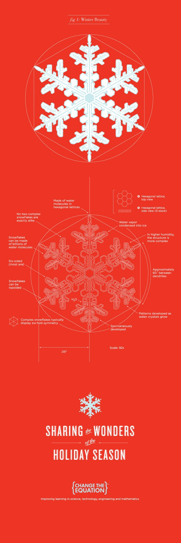 66 best science all around images on pinterest chemistry science science behind a snowflake fandeluxe Image collections