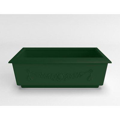 TerraCastProducts Roma Resin Planter Box Color: Mistletoe