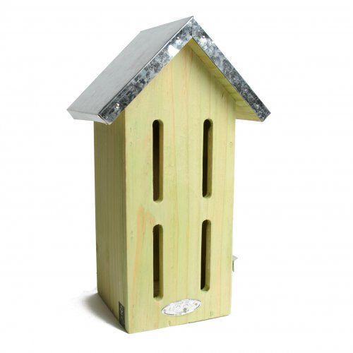 Vlinderhuis tussen de bessen