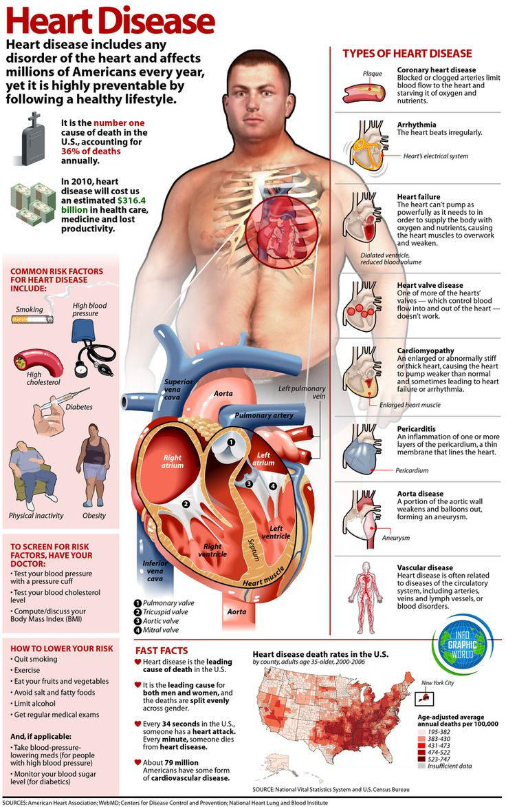 Health: Heart Disease Info-graphic, types of heart disease, common risk factors, how to lower your risk.