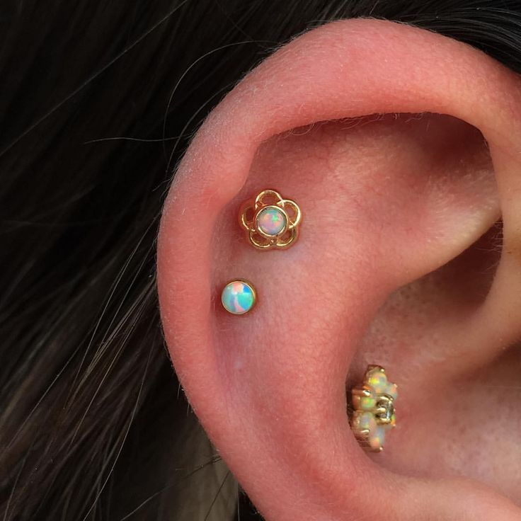 All gold jewellery made by @anatometalinc on our friend Sam  #anatometal #piercing #cheltenham