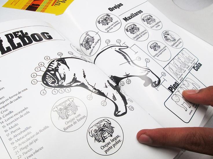 Joselo Velosa | Cátedra Proyecto Editorial 2013 | Los Libertadores