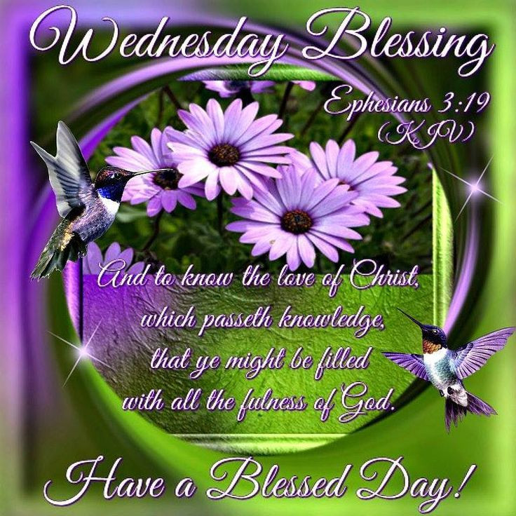 Wednesday Blessing. Ephesians 3:19- Have A Blessed Day